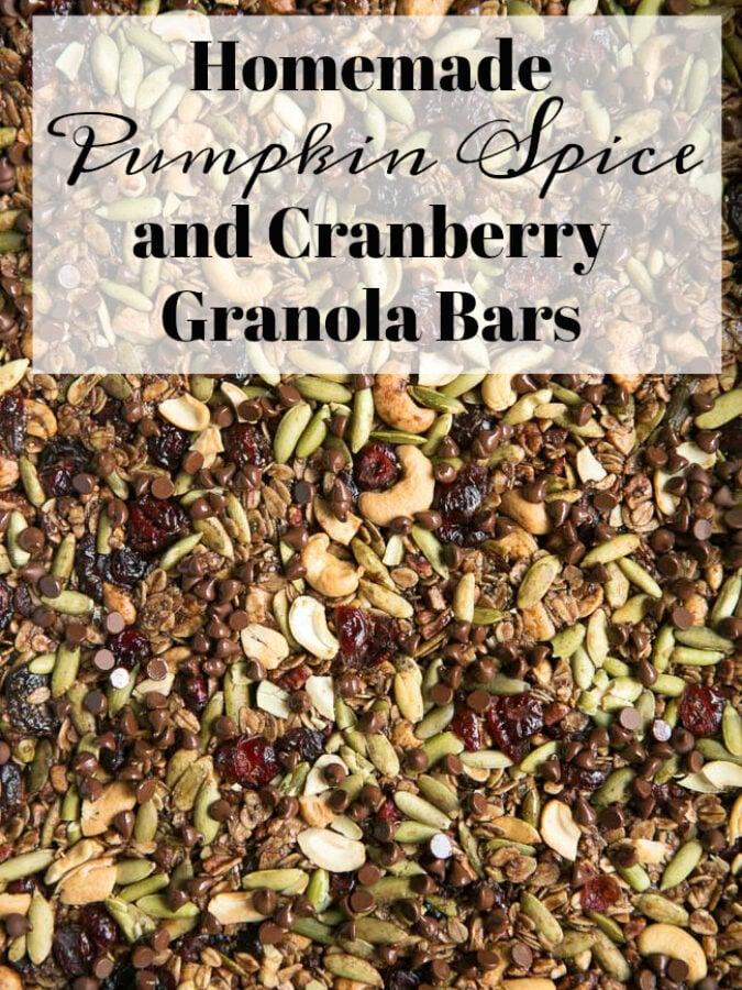 Pumpkin Spice Cranberry Granola Bars