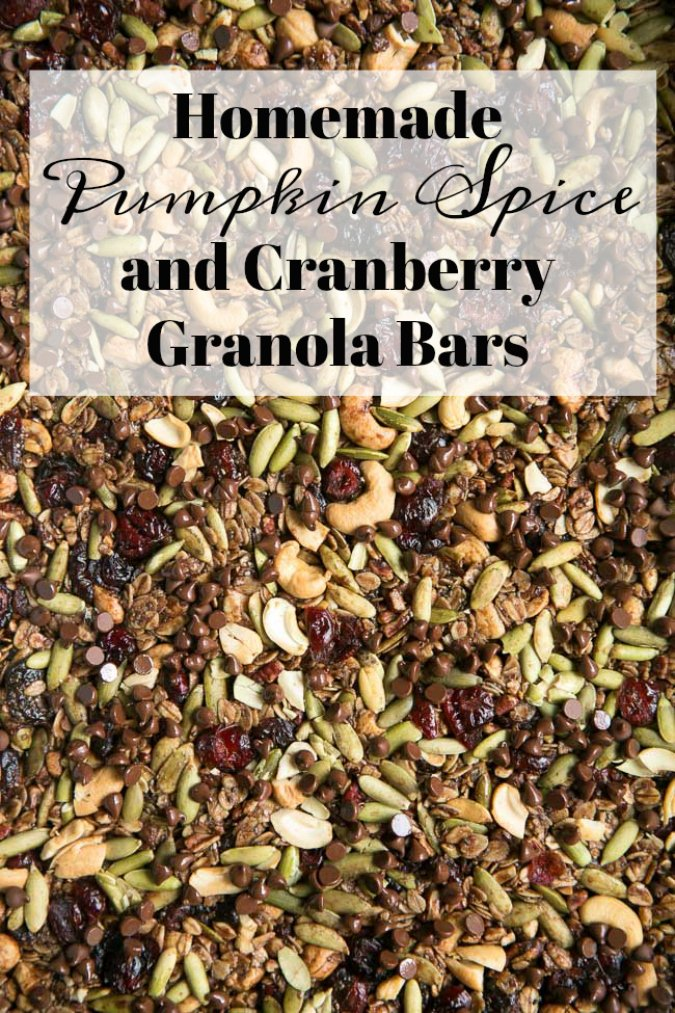 Pumpkin Spice Cranberry Granola Bars with Chocolate Chips- an easy homemade snack the whole family will love!
