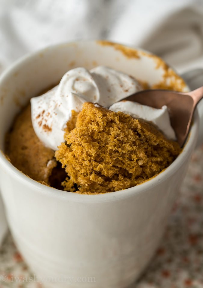 This delightful mug cake is filled with pumpkin spice and topped with whipped cream!